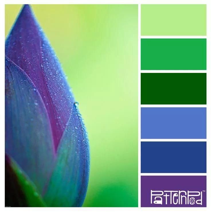 сочетание цветов в картинках синий сама себе, как
