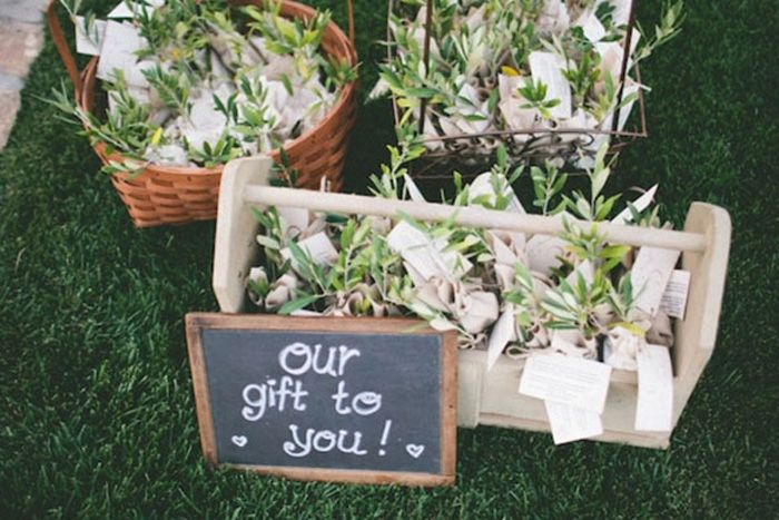DIY Seed packets - a great budget friendly option for wedding favors