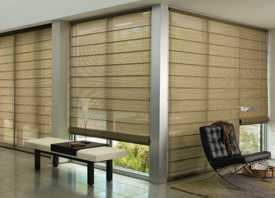 Define your style with the sheer light-filtering dimension of Alustra® Woven Textures® Roman Shades ♦ Hunter Douglas window treatments  #LivingRoom