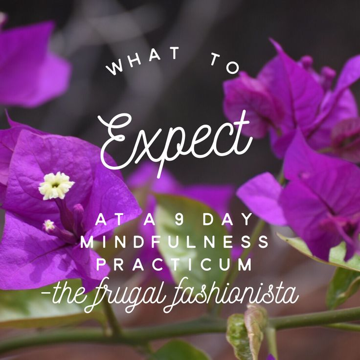 What to Expect at a 9 Day Mindfulness Practicum http://thefrugalfashionistacdn.com/wht-to-expect-at-a-9-day-mindfulness-practicum/