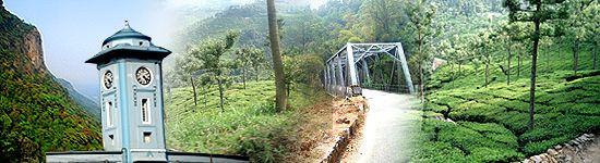 coonoor - tea plantation garden town... along toytrain line from Mettupalayam to Ooty