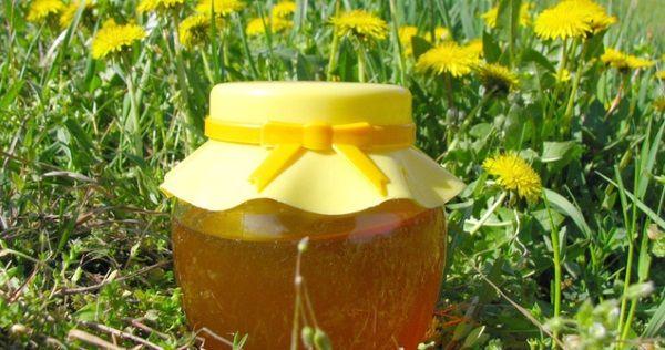 Iskoristite maslacak kao prirodni lijek- sirup i med od maslačka