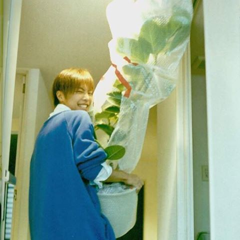 His favorite houseplant He looks very glad . #成宮寛貴 . ひろ君の大好きな観葉植物 めっちゃ嬉しそうに見える