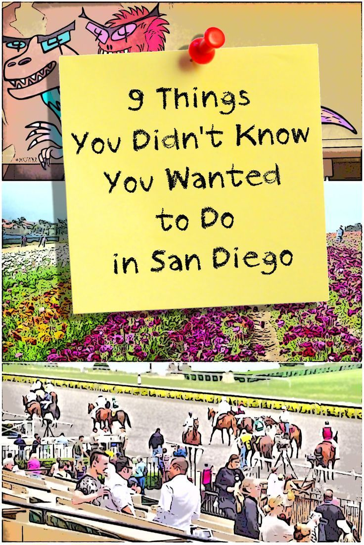 Read this before you go to San Diego, to find some things you may not have heard about - but definitely want to do.