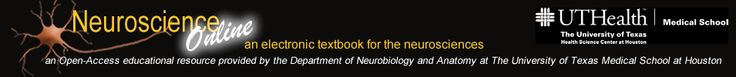 Neuroscience Online: An Electronic Textbook for the Neurosciences | Department of Neurobiology and Anatomy - The University of Texas Medical School at Houston: great review of neuro along with short video descriptions of things