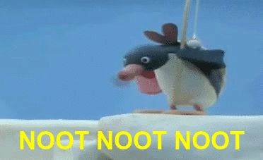 What does NOOT even mean