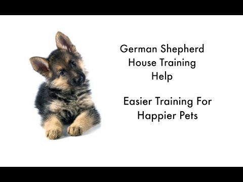German Shepherds Housebreaking Your German Shepherd Puppy Potty