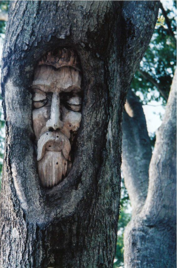One of the Tree Spirits of St. Simons Island, Georgia.  Sculptor: Keith Jennings.: Stsimon Islands, God Wood, Spirit Trees, Wood Trees, Trees Spirit, Trees House, Art Artisanat, St. Simon Islands, Treespirit T658 Jpg 565 855
