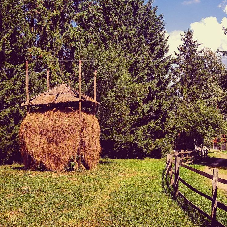 Romanian-style #haystack Photo: Diana Topan  #hay #village #romania #tradition #rural