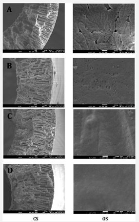 Effect of Polymer Dope Concentration on the Morphology and Performance of PES/PDMS Hollow Fiber Composite Membrane for Gas Separation by Xiangbao Liu, Huan Liu and Pei Li* in Juniper Online Journal Material Science (JOJMS) https://juniperpublishers.com/jojms/JOJMS.MS.ID.555573.php