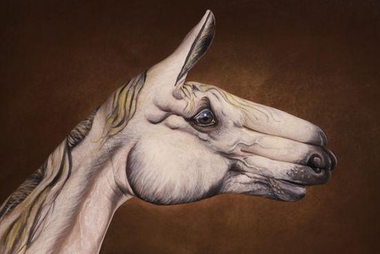 Hand Painting Art by Guido Daniele