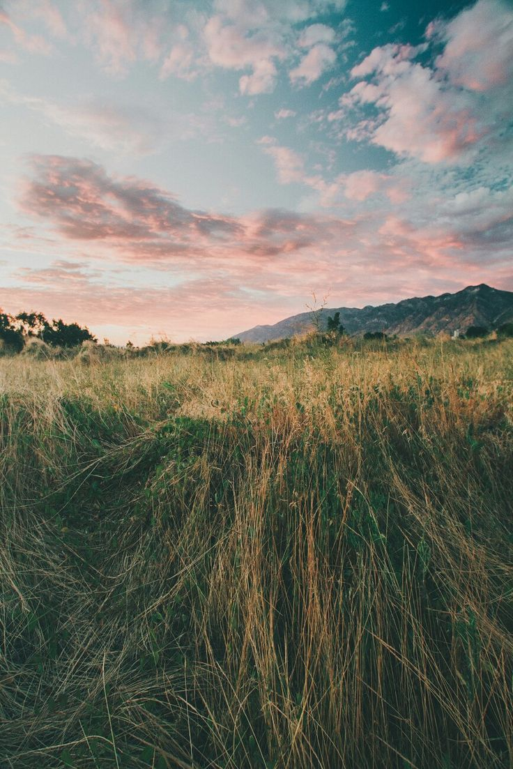 656 best NATURE images on Pinterest | Paisajes, Forests and Nature