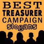 Treasurer-Dylan E 2014 DVMS StuGo election