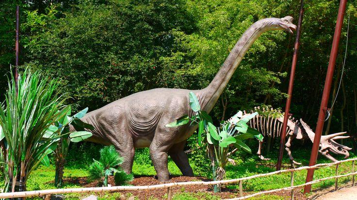Brachiosaurus,_DinoPark_Vyškov.JPG (1922×1080) - Dinosauria, Saurischia, Sauropodomorpha, Sauropoda, Eusauropoda, Macronaria, Titanosauriformes, Brachiosauridae. Auteur : DinoTeam, 2010.