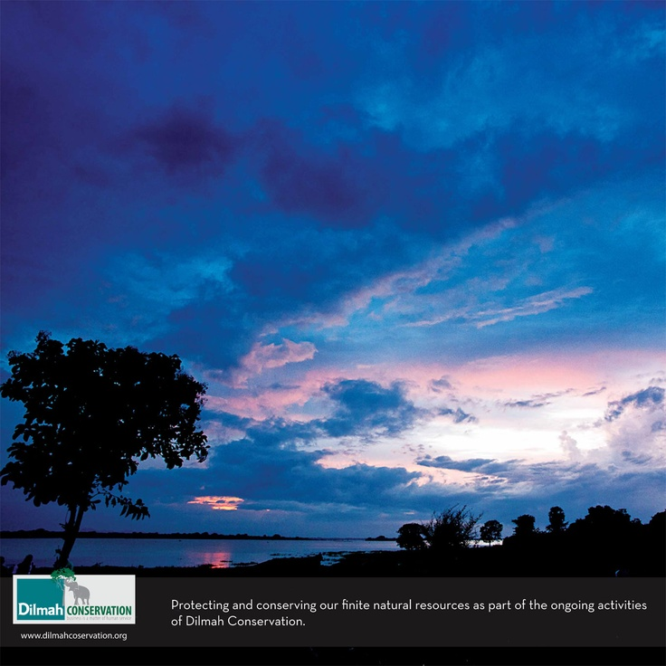 Protecting and conserving our finite natural resources as party of the ongoing activities of Dilmah Conservation.