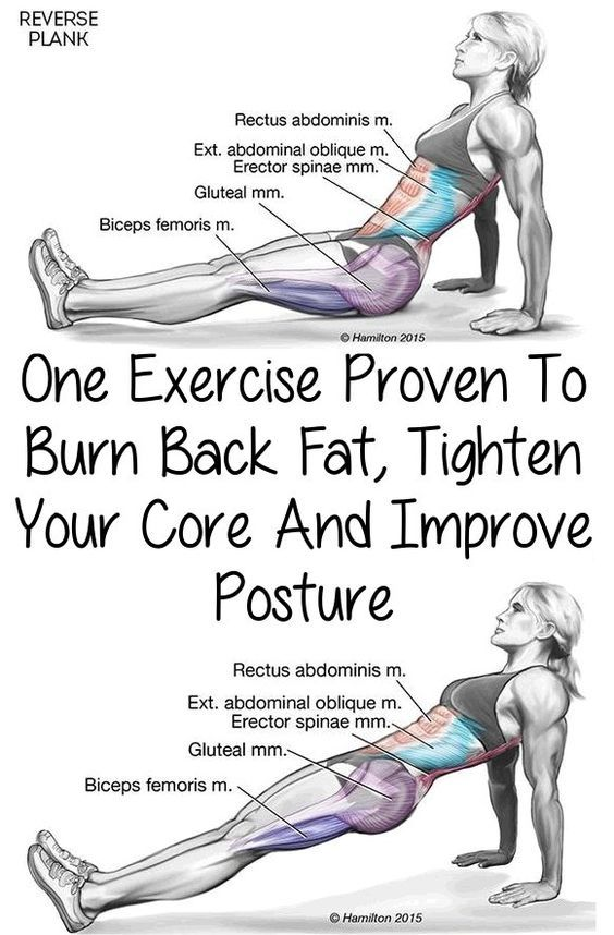 Okay, today you're going to learn how to reverse plank. One of the first places you gain weight is typically around your belly. It's also one of the hardest places to lose fat. But going to the gym isn't the only way to stay in shape: there are many body weight exercises you can do at home to shed the extra pounds.