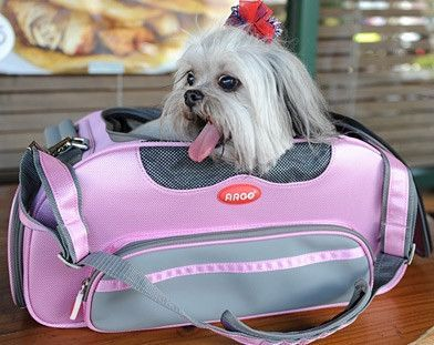 Teafco Aero-Pet Airline Approved Carrier