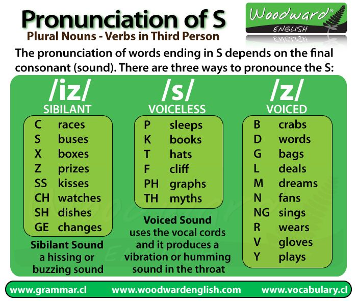 The Pronunciation of the letter S at the end of words in English, especially Plural Nouns, Verbs in 3rd Person and the Possessive Case.