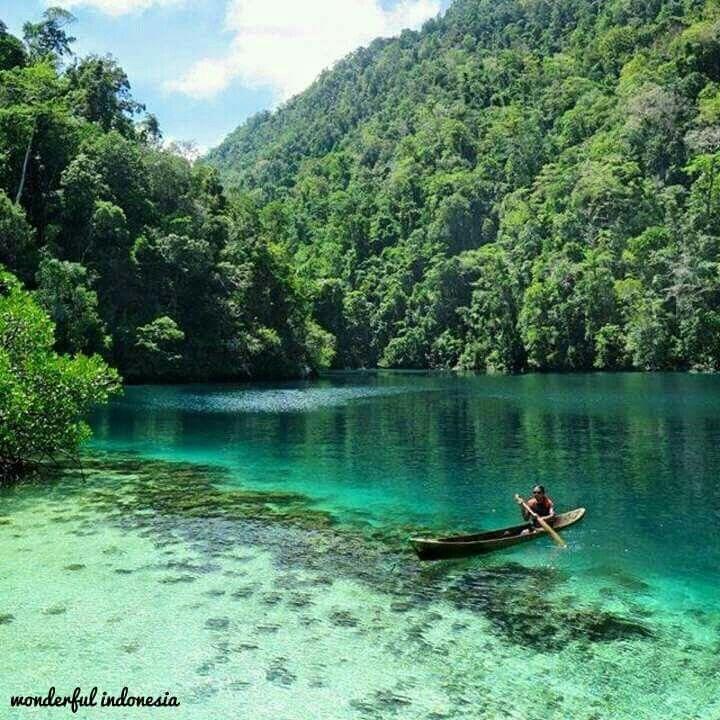 Labengki island, Southeast sulawesi.