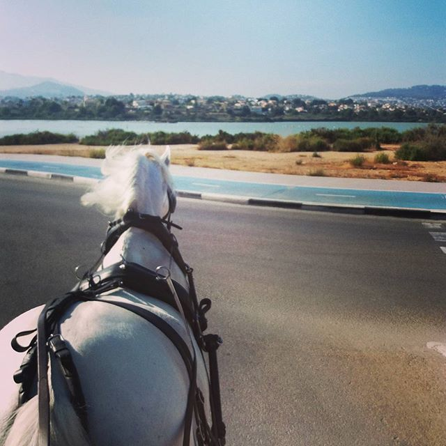 Descubre su interior Descubre Calpe #salinas #descubre #horsecarstour #calp #calpe #turismo  #infoturismo #turistic #ifach #alicante #valencia #playa #arenal #plazacolon  #restaurant #restaurantes  #hotel #hoteles #horse #caballo #tour #walking #trips #suitopia #suitopiahotel  #suitopiahotelcalpe #suitopiaspecialevent #solymarhotel #diamantehotel #hotelesmeralda #montereylocals #salinaslocals- posted by HORSE CARS TOUR https://www.instagram.com/horsecarstour - See more of Salinas, CA at…