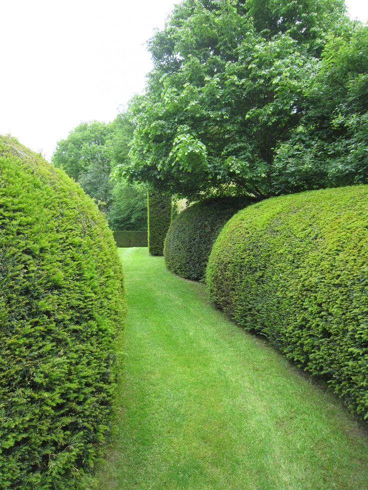 #Volúmenes con #setos en el #Jardín