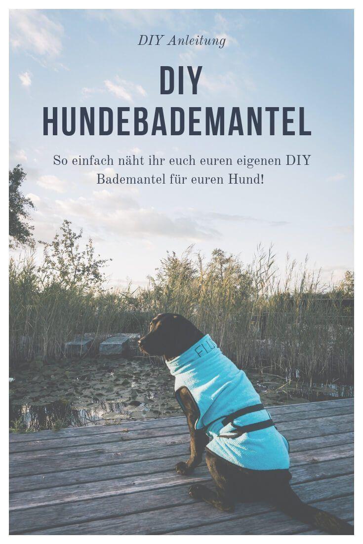 ➡ DIY Spielzeug für Hunde: Hundespielzeug zum Kauen & Zerren selber machen