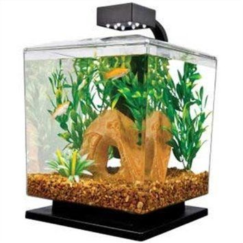 Amazon.com: Tetra 29137 WaterWonders Aquarium Cube, 1.5 Gallons, Black: Pet Supplies