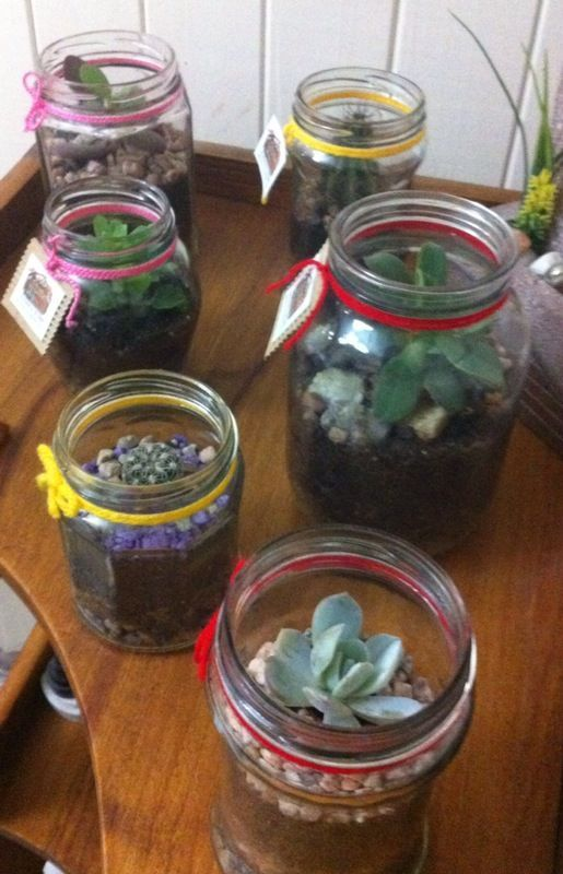 Terrarios con Frascos de vidrio reciclados