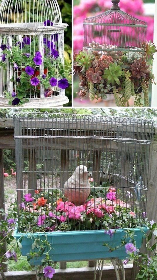 24 Creative Garden Container Ideas   Use bird cages as planters!