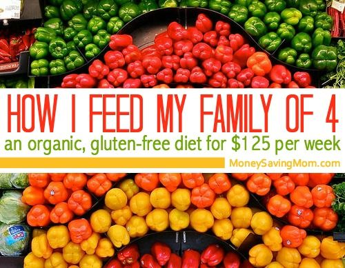 Guest post from Anne of Anne's Healthy Kitchen A couple of years ago I wished my family could eat an organic diet, but I thought it would be too expensive. Even so, I started to make changes one step at a time …