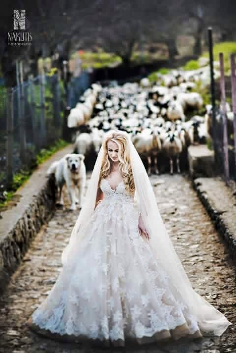 Bride in the wood, wedding day, Ravello, Hotel Bonadies Ravello, Amalfi Coast, Sposa Mediterranea, Olga studio.