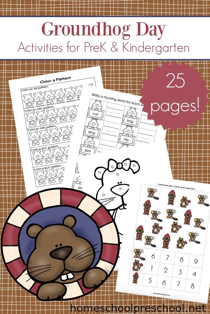 Groundhog Day Printable Activities For Preschoolers Groundhog Day Activities Free Preschool Printables Preschool Activities [ 1100 x 735 Pixel ]