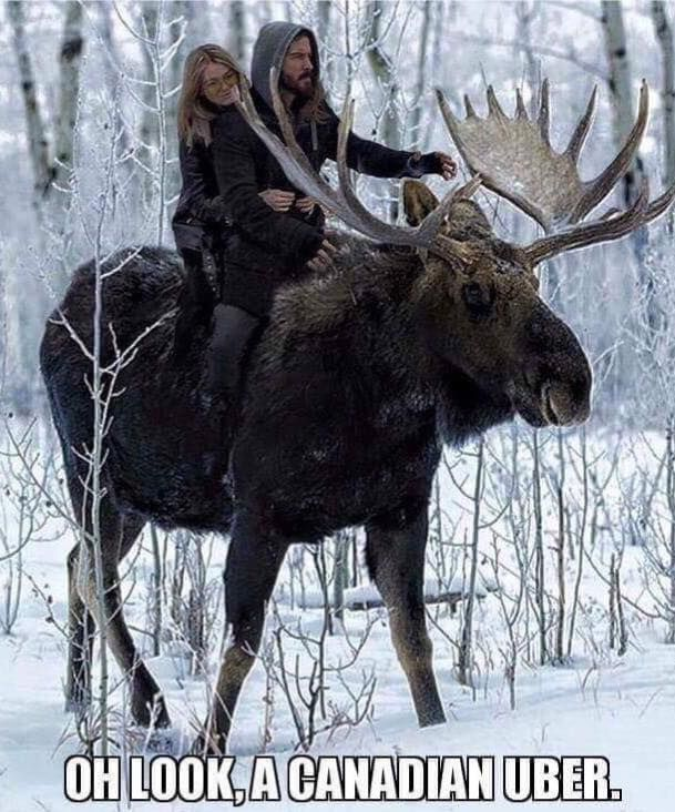 Totally a Canadian Uber.. haha