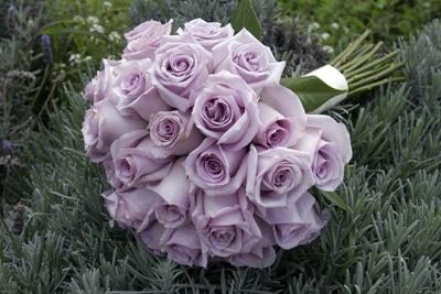Purple Rose Wedding Bouquet on Bouquet Bridal  Lavender Rose Bouquet
