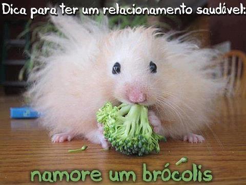 Verdade Vegetariana