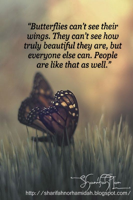 Butterflies can't see their wings. They can't see how ...