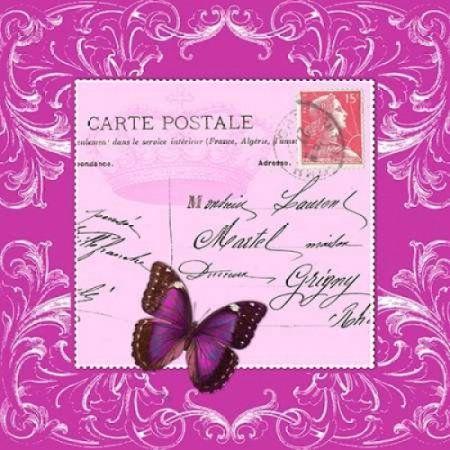 Butterfly Carte Postale Pink Canvas Art - Marion De Lauzun (24 x 24)