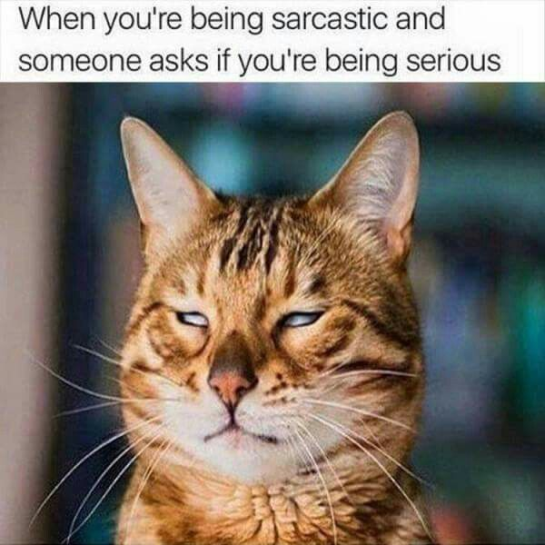 When you're being sarcastic & someone asks you to be serious.