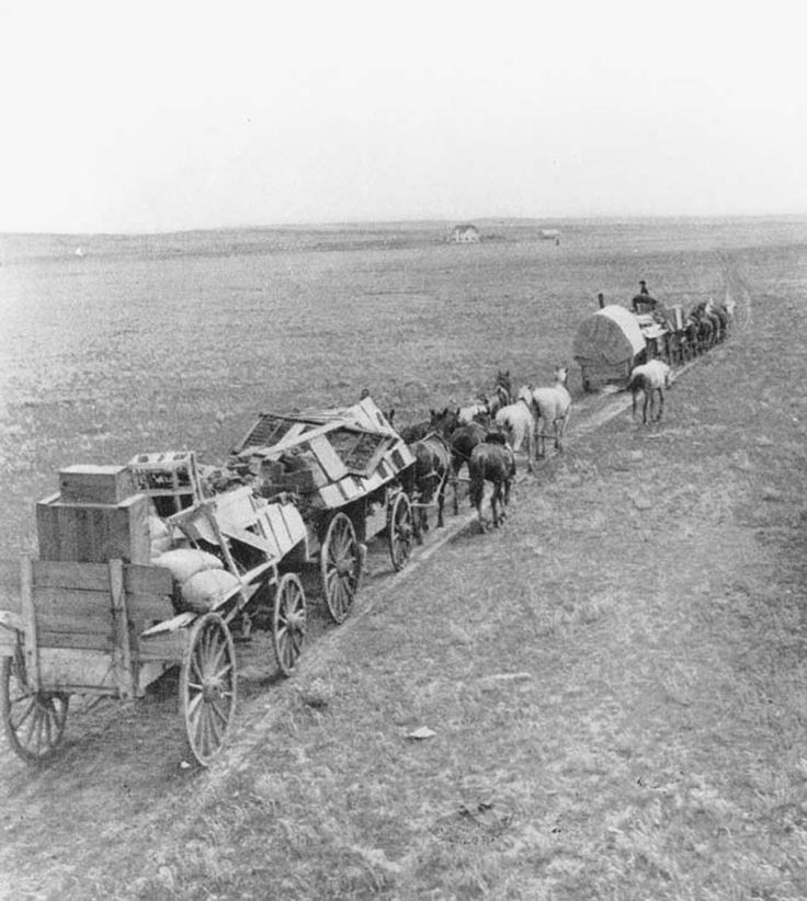 Like a wagon train preparing to leave pioneer wagons jpg oregon trail