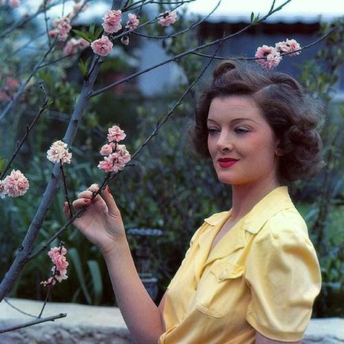 A beautiful springtime colour photo of actress Myrna Loy. #vintage #1940s #actresses