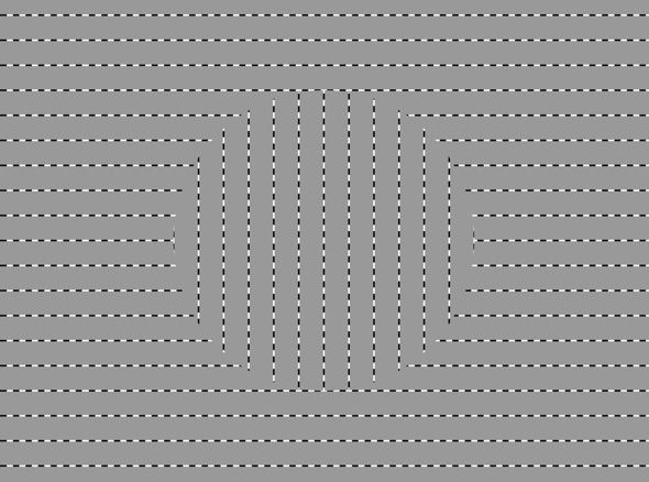 Best Illusion Optique Optical Illusion Illusions Optiques - Fascinating optical illusion disguises 12 black dots right in front of you