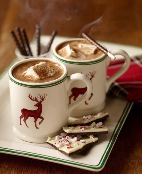 Peppermint hot chocolate - stick a candy cane and some peppermint marshmallows in it too