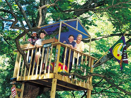 50 kids treehouse designs my boys for kids and simple for Easy to build tree houses