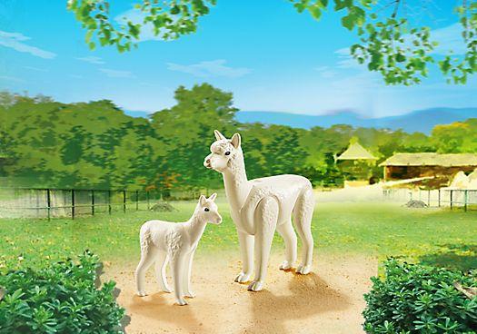 Alpaka mit Baby