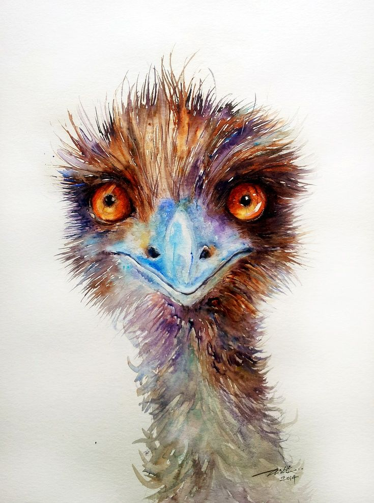 ARTFINDER: Dark Chocolate _Emu by Arti Chauhan - Another Emu ,looking sharp as ever.These soft feathered,flightless Australian birds are distant relatives to the ostrich.I like the alert look in their orang...