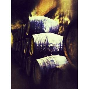 Wineries. Jerez de la Frontera. (by @amayas)