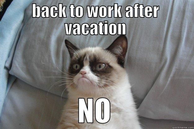 back to work after vacation - BACK TO WORK AFTER VACATION NO Grumpy    Back To Work After Vacation