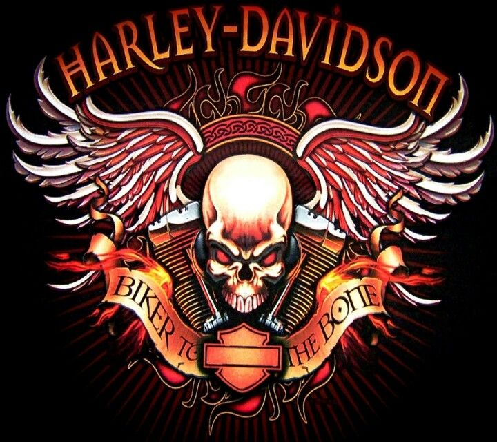Haley Davidson