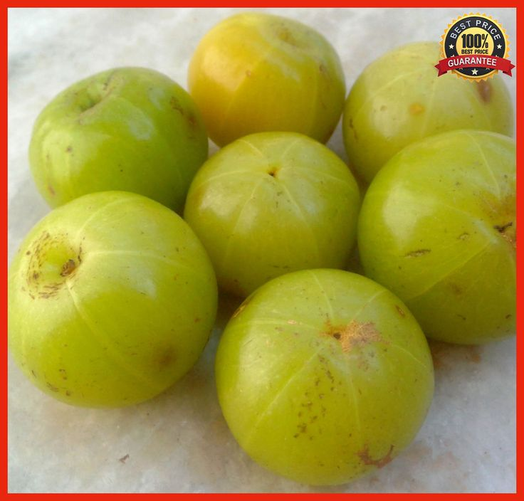 25pcs Rare Star Gooseberry Seeds (Phyllanthus acidus), Fruit Seeds in Bonnsai