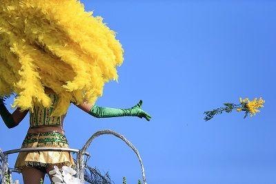 Carnaval de Nice, édition 2013 : Une bataille des fleurs entre modernité et tradition #carnavalnice #carnaval2013